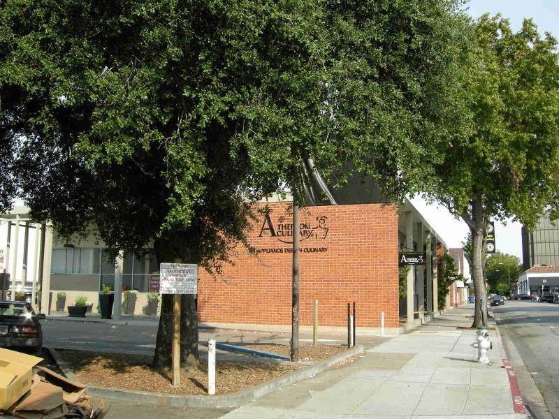 Primrose Heritage Oak