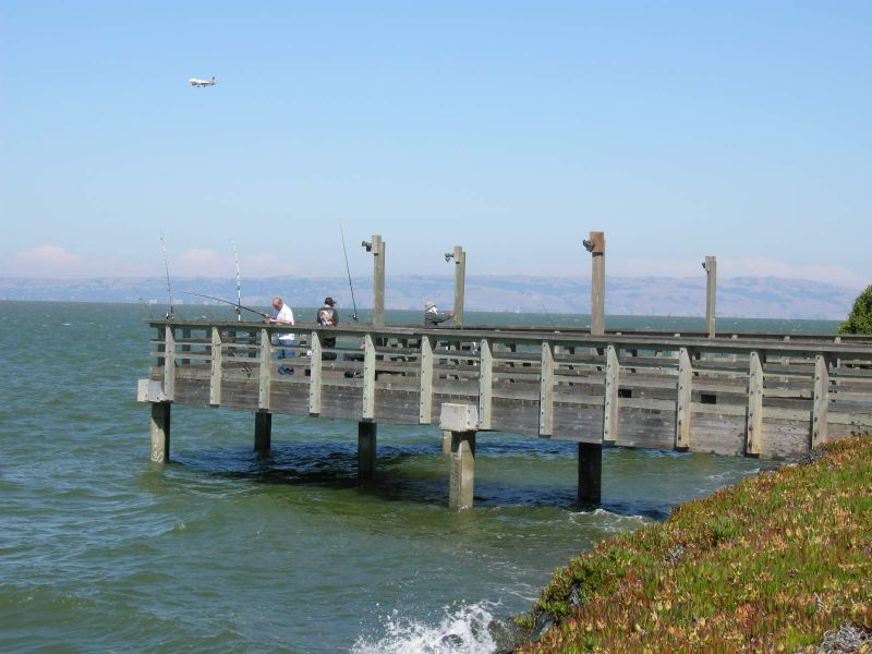 Bayfront fisherman2