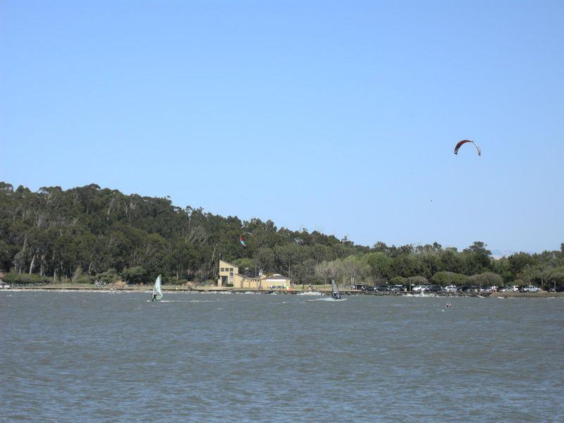 Windsurfers4