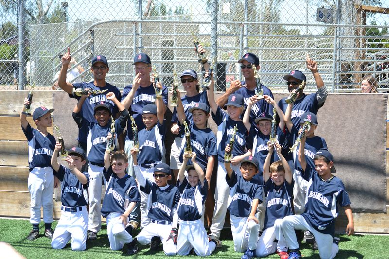 Little League championship1