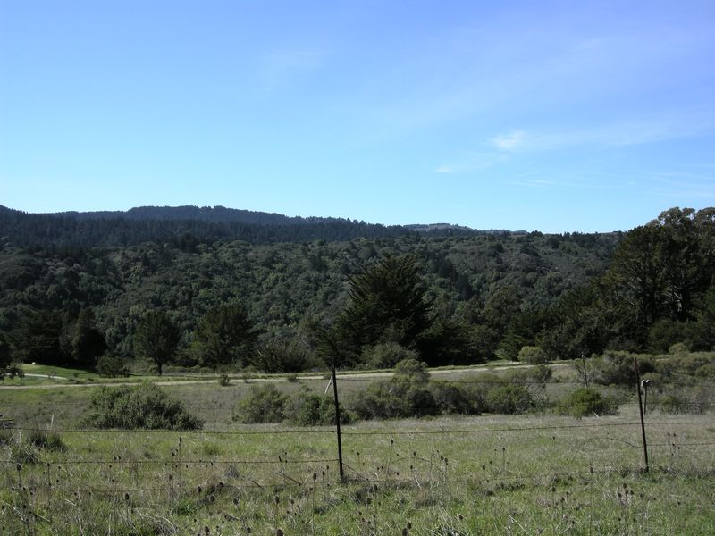 Crystal Springs scenic