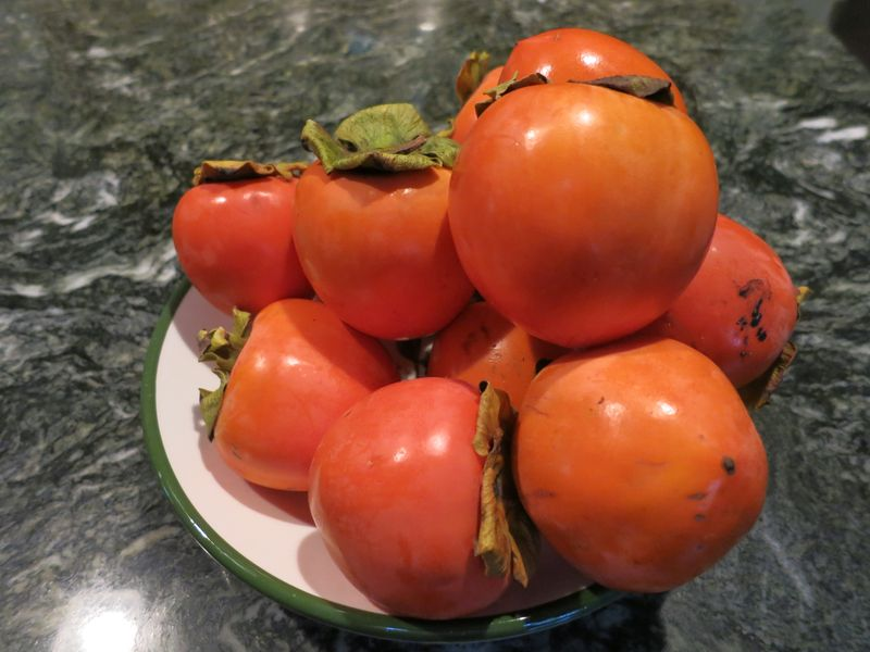 Persimmons