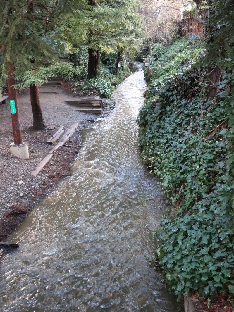 Heritage Park creek