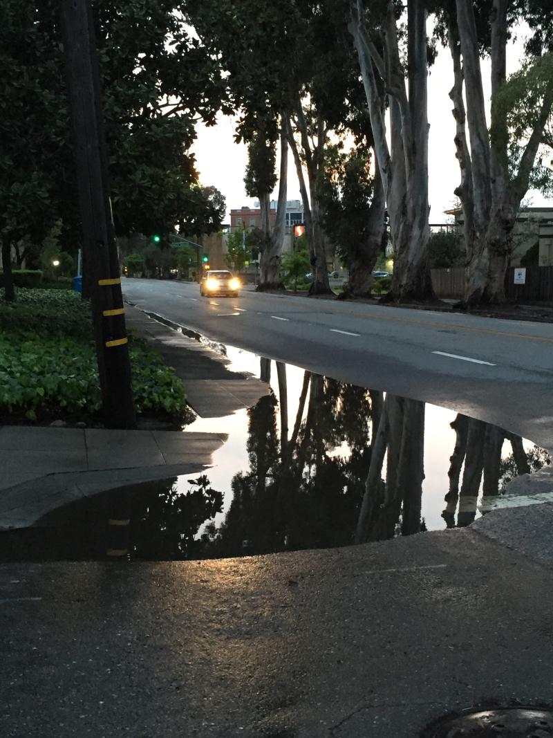ECR Flooding_0420